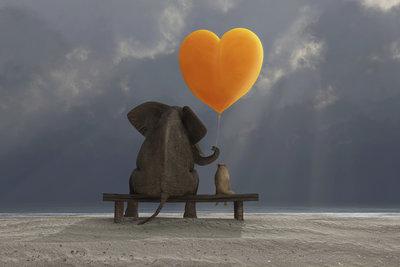 Liebe besteht nicht darin, dass man sich anschaut, sondern dass man gemeinsam in dieselbe Richtung blickt.