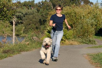 Leidet Ihr Hund unter Schuppen, sollten Sie sich mit ihm viel an der frischen Luft aufhalten.