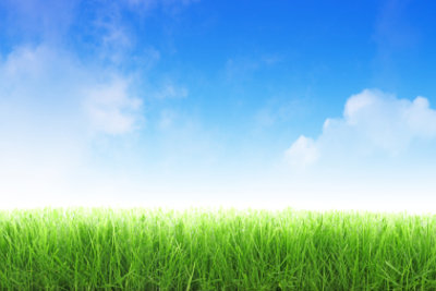 Fassen Sie Ihren Rasen mit Mähkantensteinen ein.