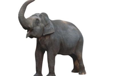 (Fast) besser als das Original - so gelingen günstige Elefanten-Faschingskostüme.