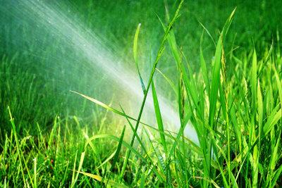 Kostenloses Regenwasser gibt es aus der Zisterne.