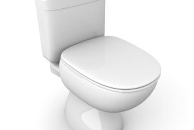 Einen schlichten WC-Sitz kann man fantasievoll verschönern.