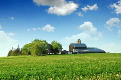Wenn Sie einen Bauernhof pachten möchten, müssen Sie vieles bedenken.