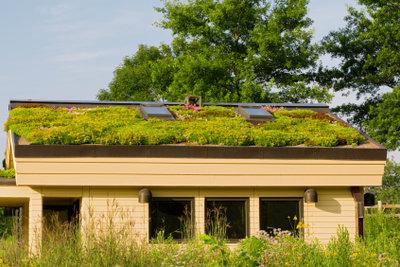 Auch Rasen kann auf dem Gartenhausdach wachsen.