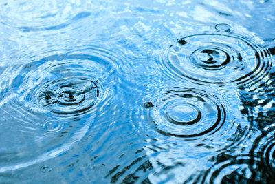 Kostbares Regenwasser kann man in Tonnen sammeln.