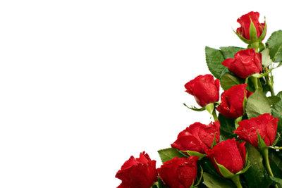 Ausgefallene Ideen machen Heiratsanträge zu etwas Besonderem, egal ob mit oder ohne roten Rosen.