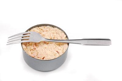 In geringen Mengen ist Thunfisch nicht schädlich für Hunde