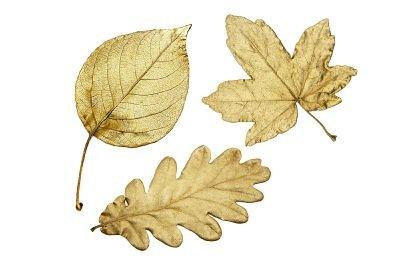 Werten Sie alte Gegenstände durch Blattgold auf.