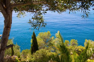 Im Dezember erleben Sie Mallorca in Ruhe und Beschaulichkeit.