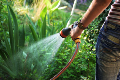 Den Garten können Sie mit Brunnenwasser gießen.