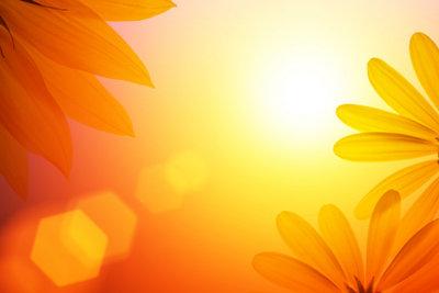 Infrarot-Heizung: Die Sonne im Zimmer!