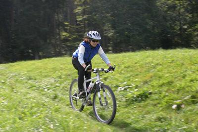 Downhill Bikes benötigen Pflege.