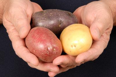 Es gibt unzählige Kartoffelsorten.