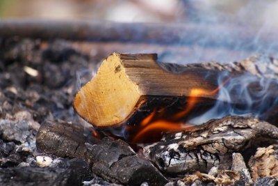 Auch Bioethanol gibt ein gemütliches Kaminfeuer.