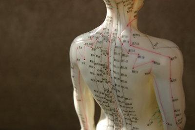 Ein Akupunkturdummy zeigt die wichtigsten Meridianpunkte.
