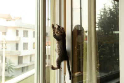 Ein Fenstersturz kann tödlich enden!