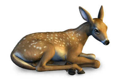 Scheues Reh? Dann machen Sie Ihr Bambikostüm für den Karneval selbst.