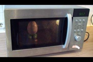 Eierkocher für die Mikrowelle - so wird er benutzt