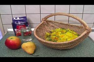 Löwenzahn - Rezepte für Gelee und Marmelade