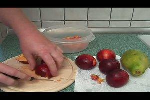 Nektarinenkonfitüre selber machen - ein Rezept