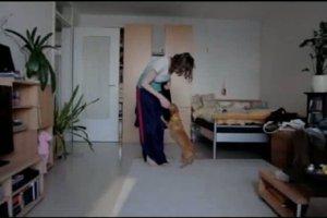 Hundeerziehung - Anspringen abgewöhnen