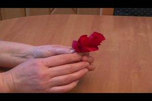 Krepprosen - Bastelanleitung für eine schöne Rose