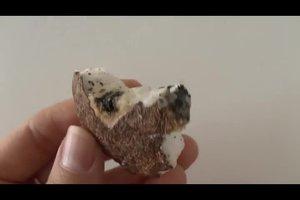 Ist die Kokosmilch schlecht? - So erkennen Sie es