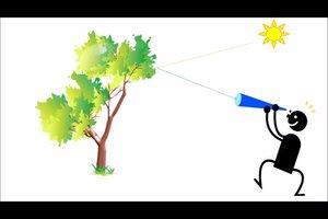 Strahlenmodell in der Physik - so erklären Sie wichtige Phänomene des Lichts