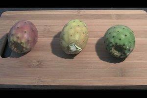 Kaktusfeigen essen und zubereiten