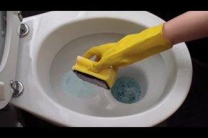 Kalk entfernen aus der Toilette - so gehen Sie vor