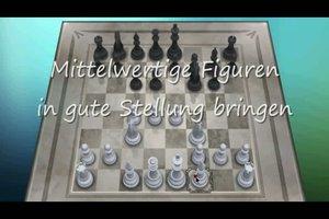 Wie spielt man Schach?