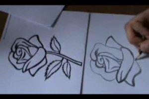 Rose zeichnen - eine Anleitung
