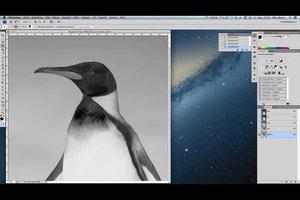 Photoshop-Anleitung - so arbeiten Sie mit Alphakanälen