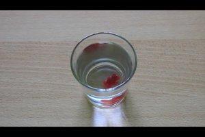 Gummibärchen in Wasser legen - eine Erklärung des Experiments