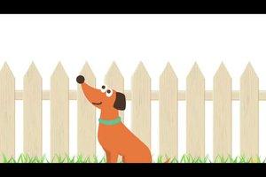 Ein Hund, ein Zaun und die richtige Höhe