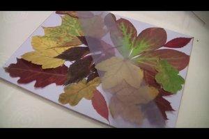 Laub als Herbstschmuck nutzen - einige Anregungen