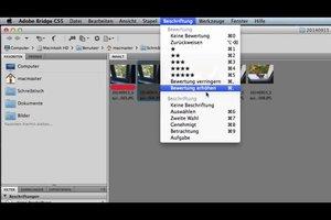Adobe Bridge CS5 - so verwalten Sie damit Ihre Bilddateien