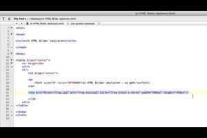 In HTML Bilder skalieren - so geht's