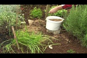 Gartenkalk richtig anwenden