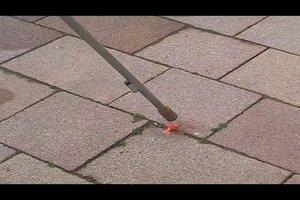 Pflaster reinigen - so befreien Sie Ihre Einfahrt von Moos und Schmutz