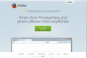 Plugin-Container in Firefox - Absturz-Probleme lösen
