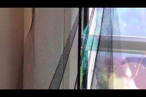 Kleine Fliegen in der Wohnung loswerden - so klappt's