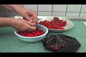 Ebereschenmarmelade - ein Rezept