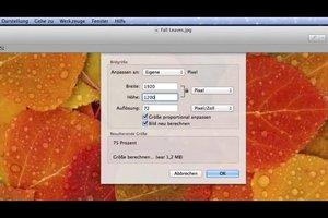 JPG verkleinern beim Mac - so geht's