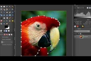 Beim Foto  den Hintergrund bearbeiten - so geht's mit GIMP