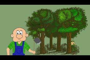 Holla, die Waldfee - Herkunft und Anwendung des Ausdrucks
