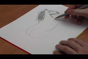 Pferde zeichnen - so gelingt es Ihnen