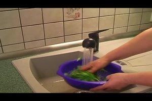 Spinat blanchieren - so  geht's