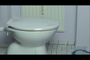 Toilettendeckel befestigen - Anleitung