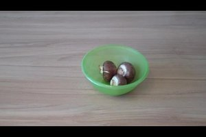 Getrocknete Pilze aufbewahren - so bleiben sie lange haltbar
